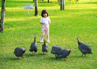 Crianças no Hotel Fazenda Mazzaropi